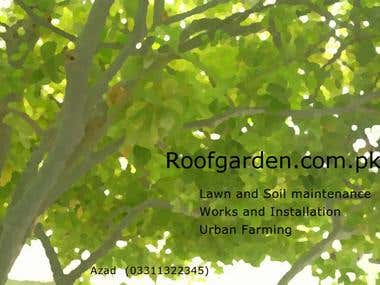 Printing & Designing Work  -Flyer for gardening business