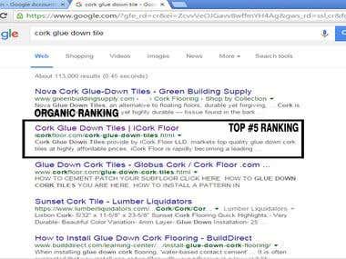 Organic Ranking TOP 5