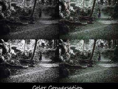 Image manipulation, restoration, color conversation.