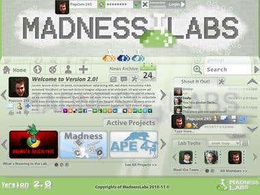 MadnessLabs.net