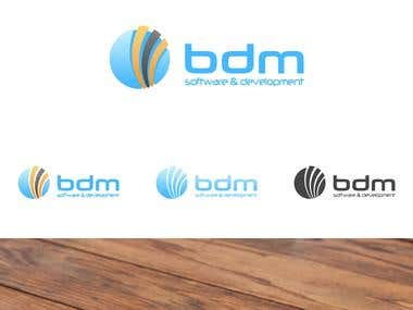 BDM software development