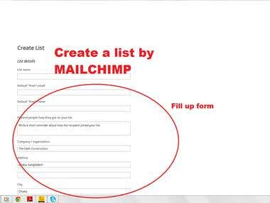 Demo project of E-mail marketing By Mailchimp