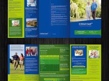 Brochure / Flyer / Catalog Designs