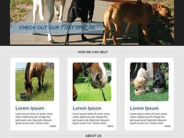 Pet Care Website