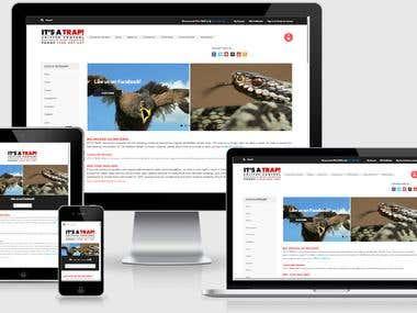 BigCommerce Responsive Web Design