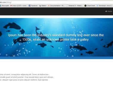 Edit WordPress web site
