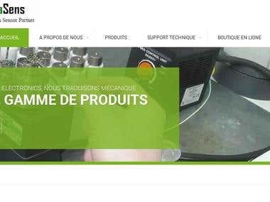 Website Transaltion into French