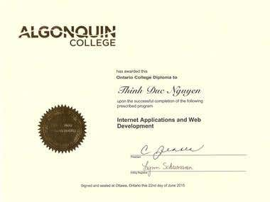 Internet application and web development diploma