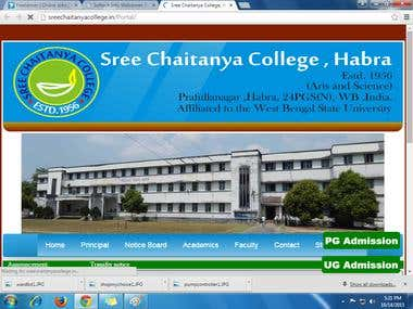 sree chaitanya college