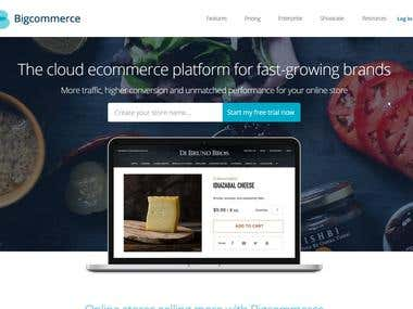 BigCommerce Store Catalog Management - Product Upload, SEO