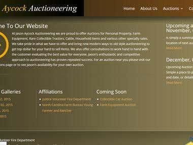 wordpress site design and develop
