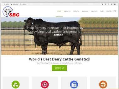 Somali Bovine Genetics