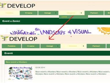 Website develop-consult.ba made in CMSMS.