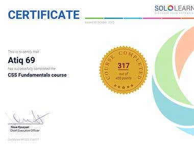 CSS Advance Course