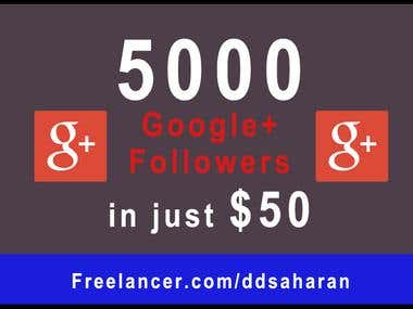 5000 Google+ Followers in just $50