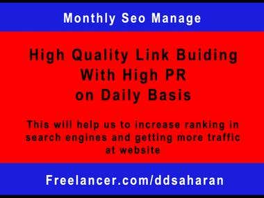 Monthly Seo Manage for Website OR Blog