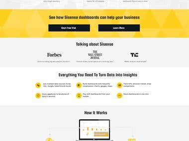 Landing page - enterprise business intelligence software