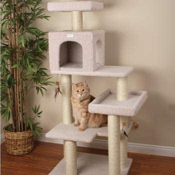 Article About CAT TREE MAKING TECHNIQUES