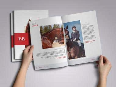 Professional Brochure Design