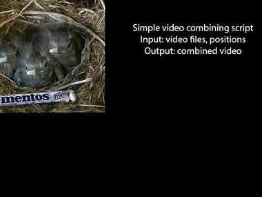 Simple Python video combining script using OpenCv