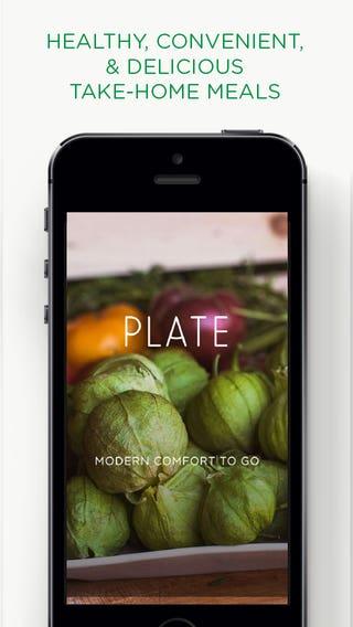 Plate SF