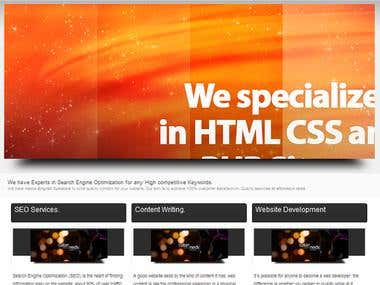Web Development  Service Website with Custom CMS
