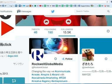 Twitter follower (Japan)