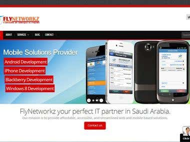Fly Networks website