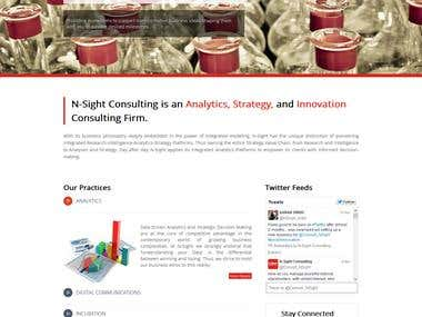 Nsight consulting