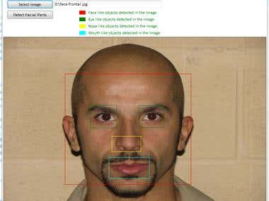 C# Face and Facial Parts Detection