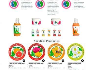 Desarrollo de Pagina Web con Tienda Online