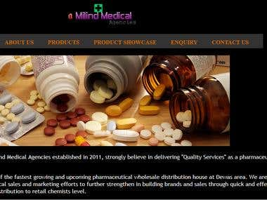 Website Development for a milind Medical Agencies