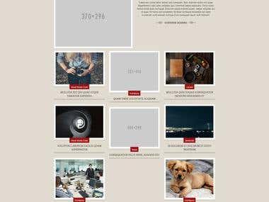 WordPress Website - Theme and Plugins