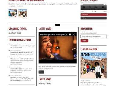 Blood Stream Media WordPress Website