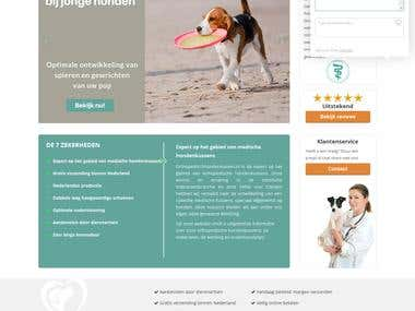 Woo-commerce integrated WordPress website