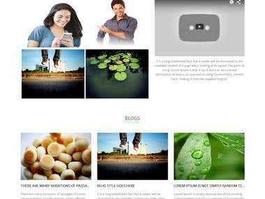 Modern Social Networking website with Video Calling Function