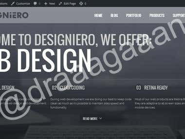 Designiero Website