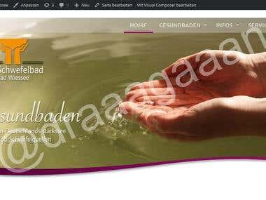 Website for iodine spas