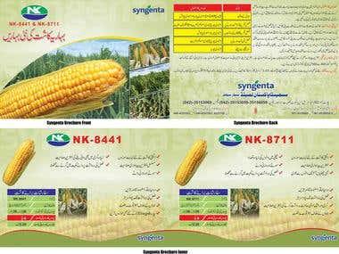 Syngenta Corn Brochure