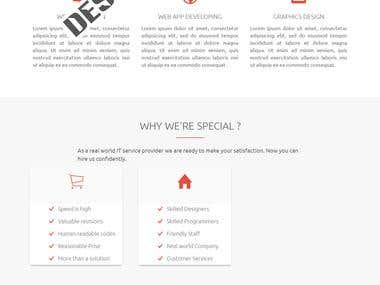 OnePage web site for IT Company