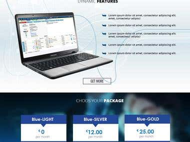 Blue Invoice Website Design