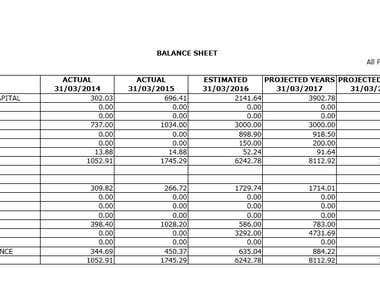 Projected Financials