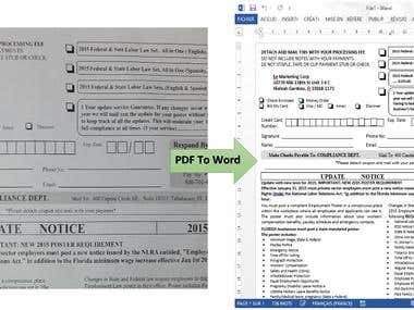 PDF to Word Manual Conversion