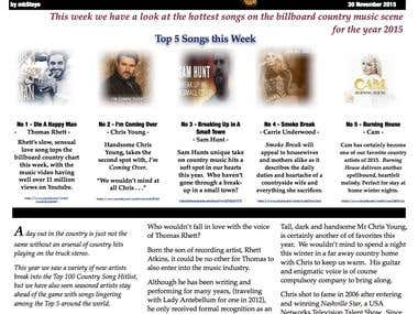 Article Writing - Example Blog Article by mbSteyn