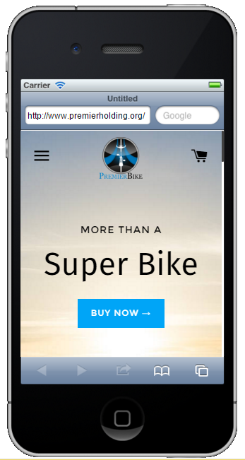 Responsive Online Store design.