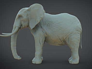 Elephant for unity 3d