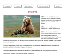 ENGLISH–ITALIAN TRANSLATION (WEBSITE)