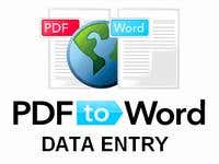 PDF to WORD Data Entry