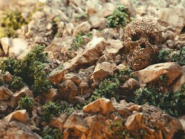 The Forgotten Skull