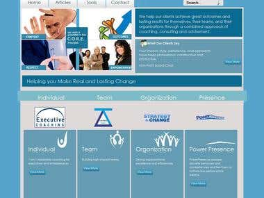 Business Consultancy Site